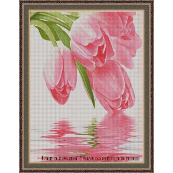 Тюльпаны отражение